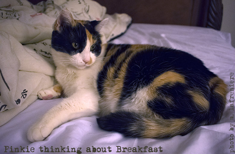Pinkie thinks about breakfast