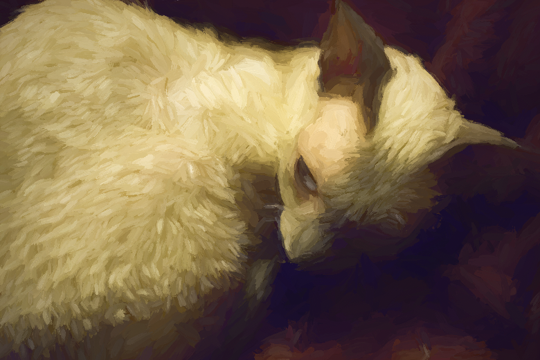 Ponzie, a Cornish Rex, done Van Gogh style. I love the wavy textures in her fur
