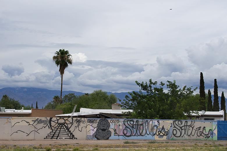 Neighborhood Mural, CactusCatz