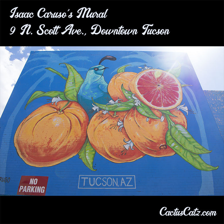 Isaac Caruso's Downtown Tucson Mural, photograph by M. LaFreniere, all rights reserved, CactusCatz.com
