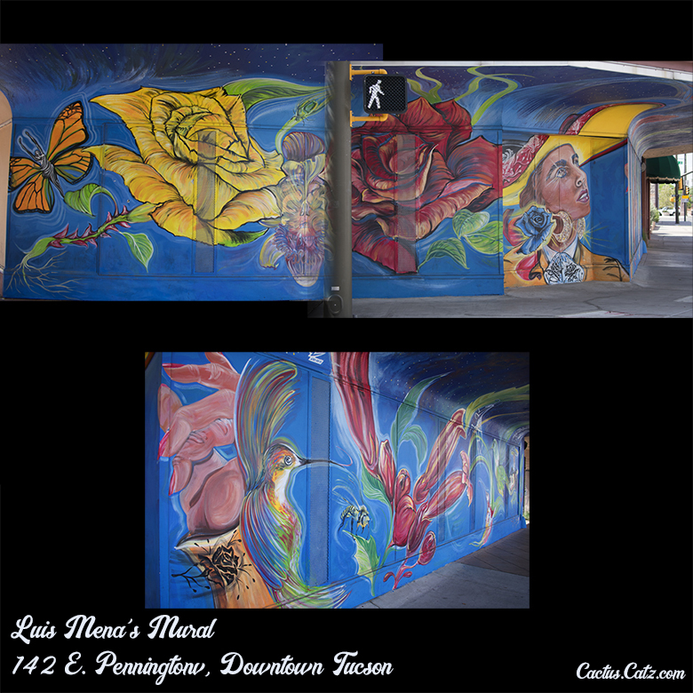 Luis Mena's Downtown Tucson Mural, photograph by M. LaFreniere, all rights reserved, CactusCatz.com