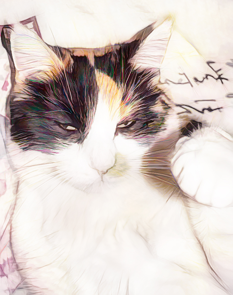 my calico cat Pinkie waving, digital photo art by M. LaFreniere, all rights reserved